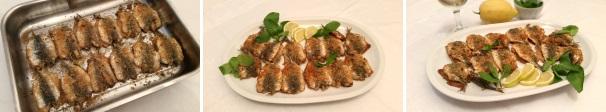 sardine gratinate_proc5