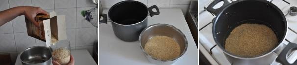 quinoa_proc1