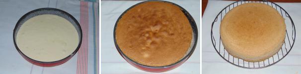 torta mimosa_proc3