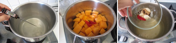 preparazione zucca marinata
