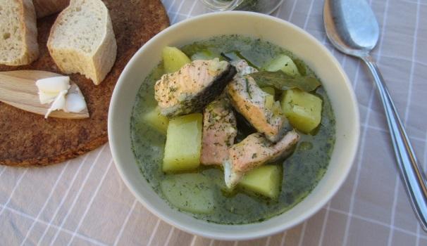 Zuppa di salmone saporita