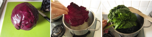 Involtini di cavolo rosso con tacchino facili