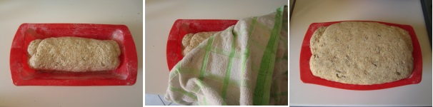 Pane veloce con sesamo e semi di girasole buonissimo