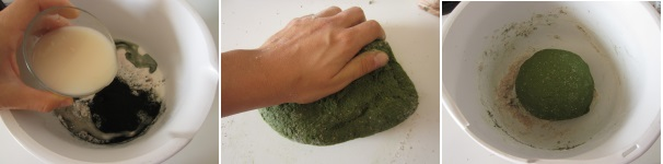 Panini con alga spirulina facili