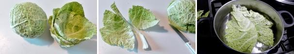 involtini di verza ricetta